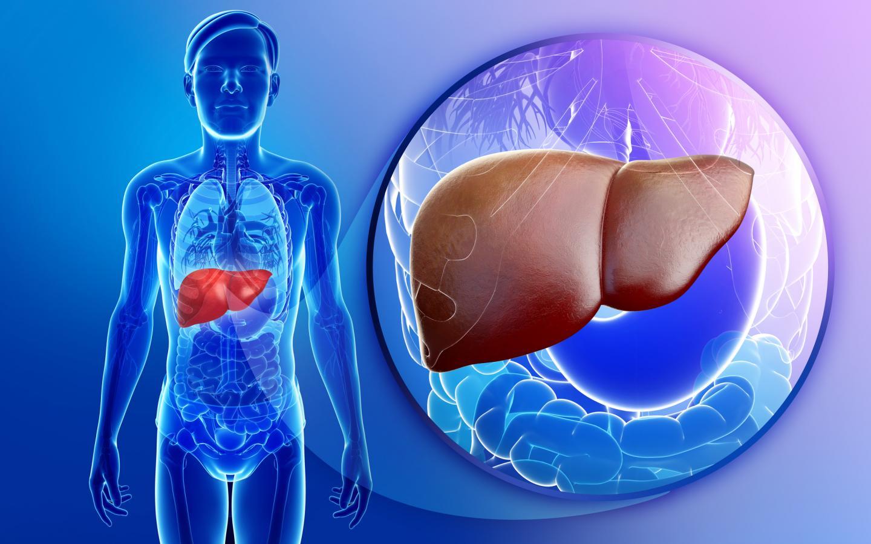 Как влияют на простату андрогенные стероиды туринабол тест