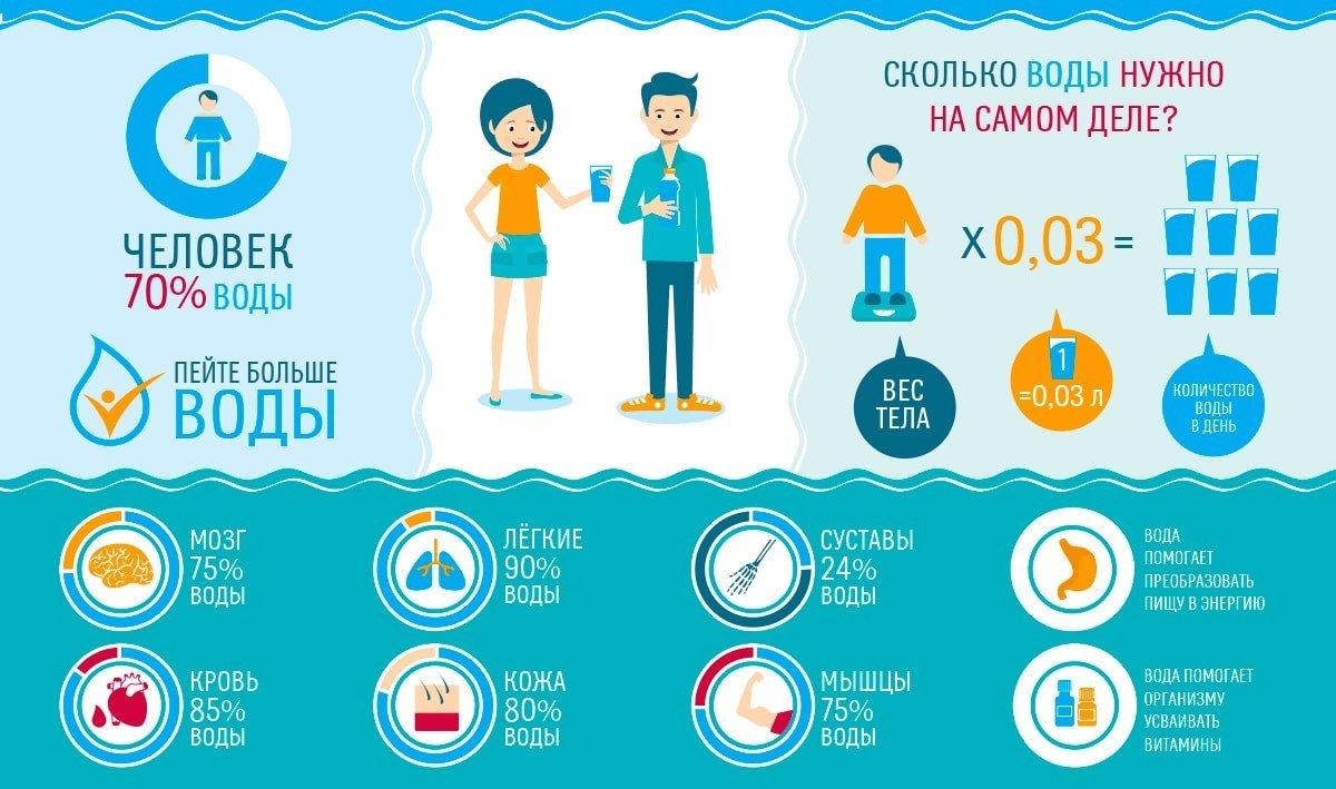 Суточная норма и количество воды в организме человека