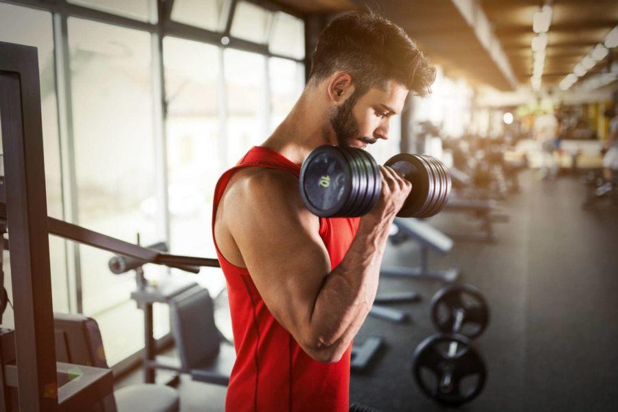 Поочередный подъем гантель на бицепс начинающим спортсменом в тренажерном зале