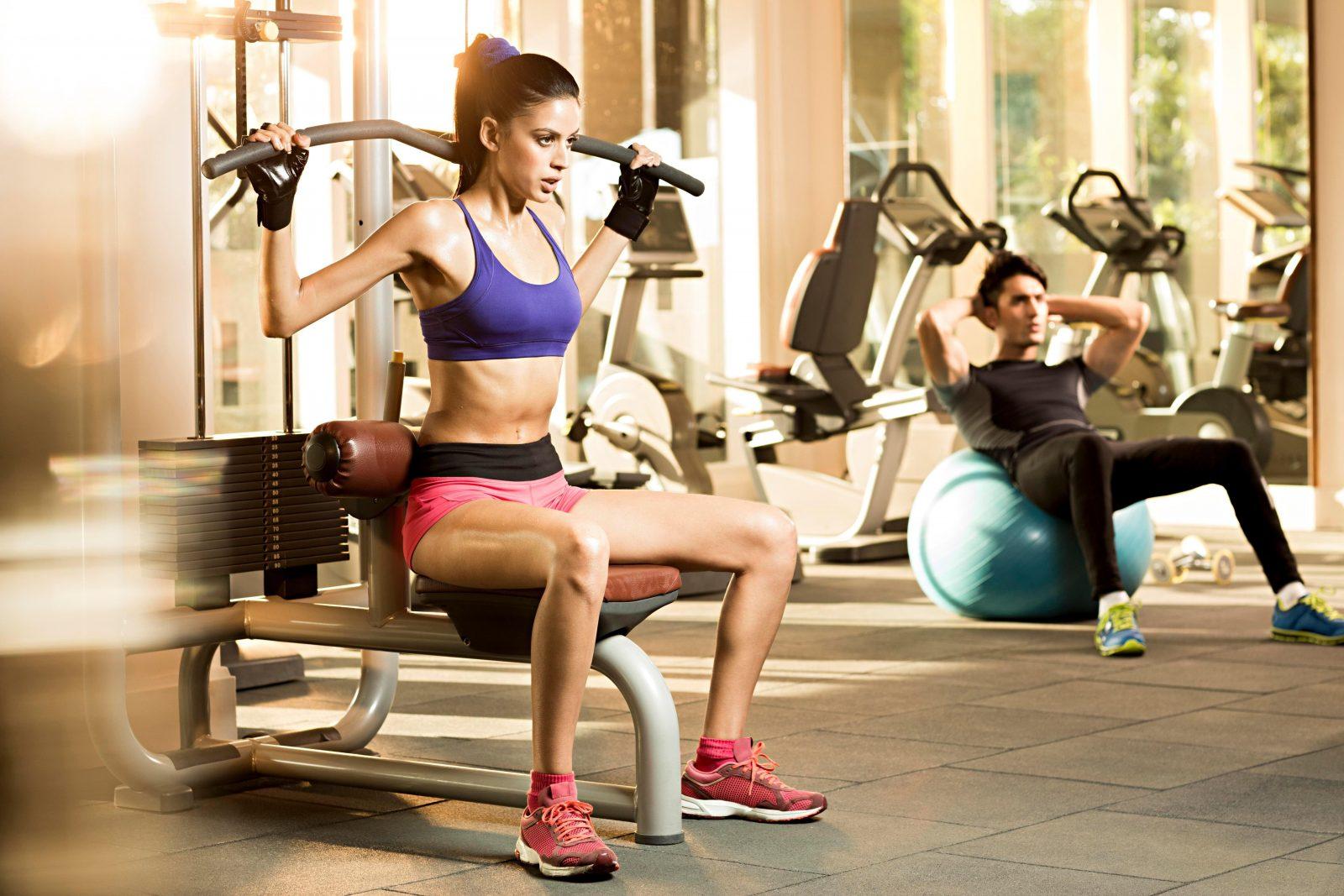 Тренировка в картинках в спортзал, хомяком
