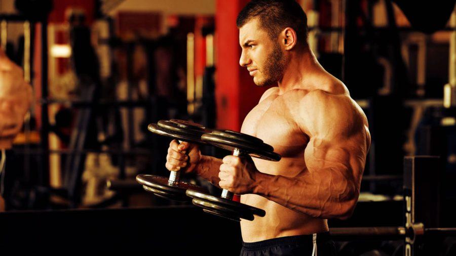 Диета для набора мышечной массы и силы: для мужчин и девушек