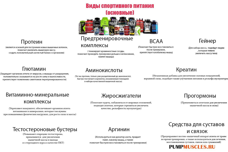Схема: основные классы спортивных добавок для человека