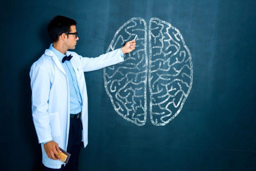 Разбираемся с мозгом человека