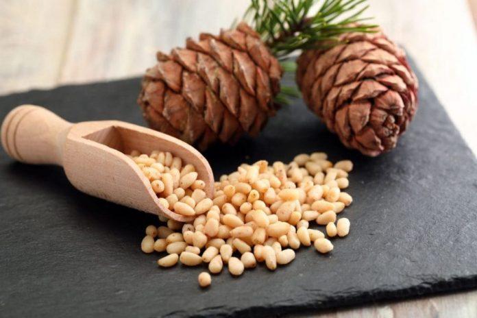 Ядра кедрового ореха и шишки