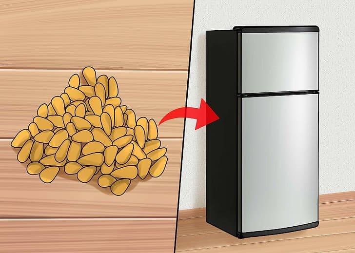 Кедровые орехи помещаем в морозилку