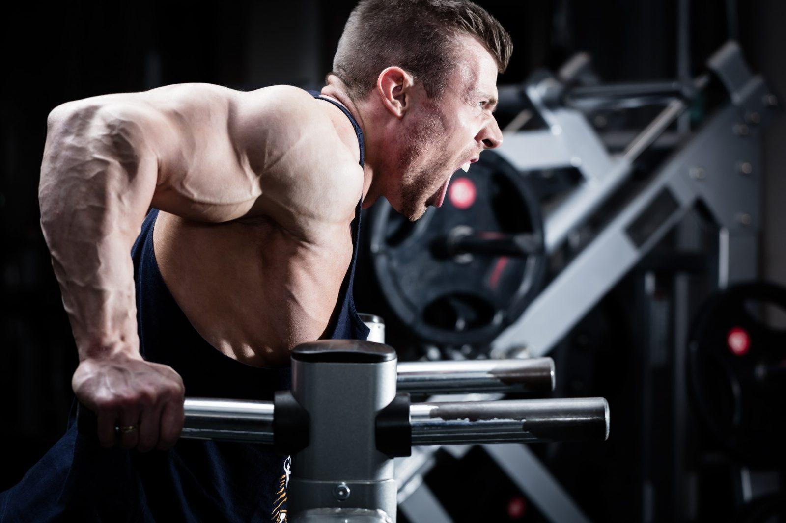 Тренировка трицепса: упражнение на брусьях