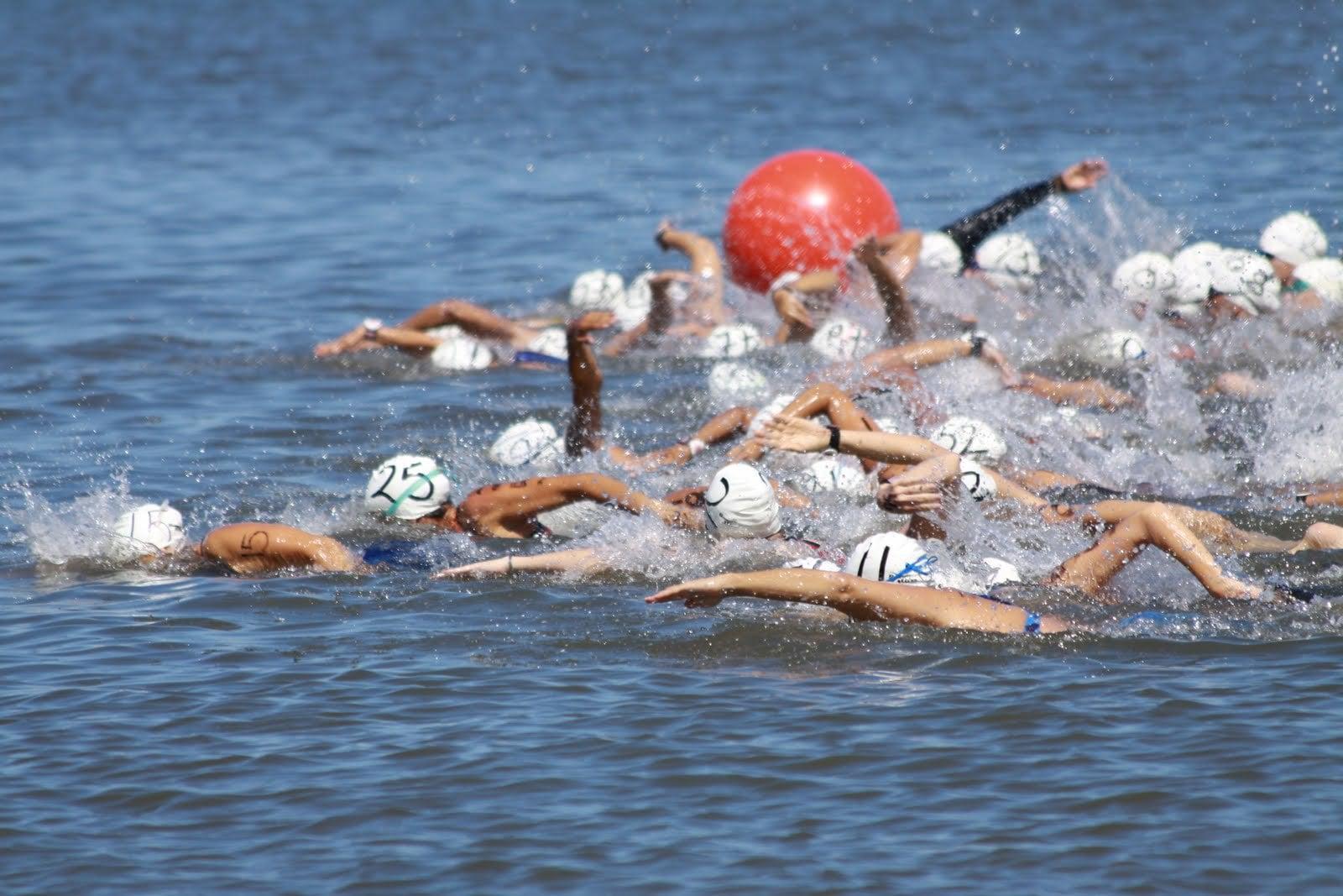 Марафонский заплыв в открытом заливе