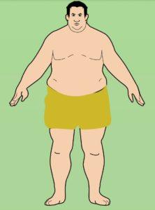 Эндоморф (толстый) тип телосложения