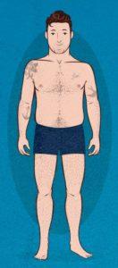 Гиперстеник (полный) тип телосложения