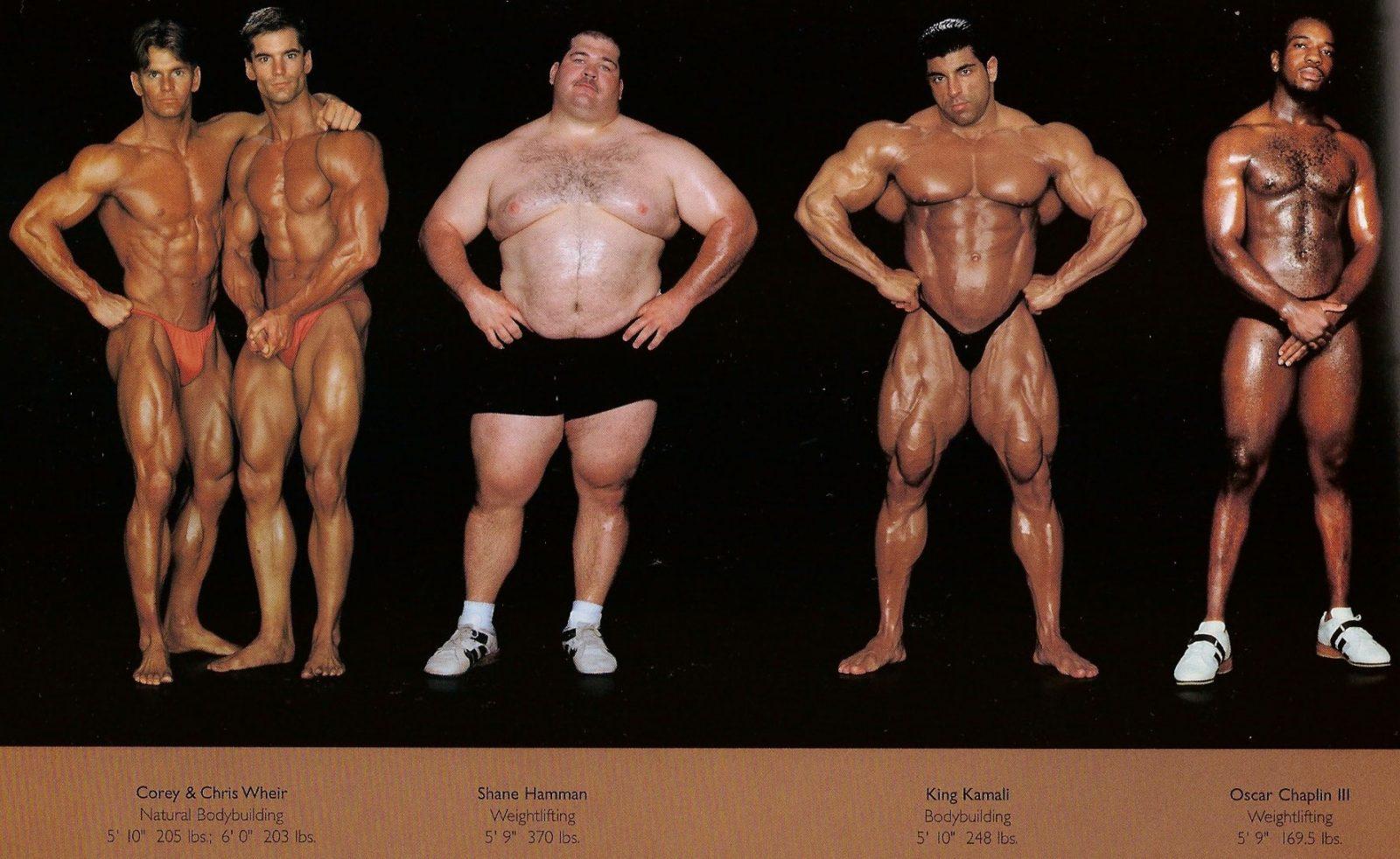 Различные типы телосложений мужчин (эктомофр, эндоморф, мезоморф)