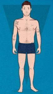Нормостеник (спортивный) тип телосложения