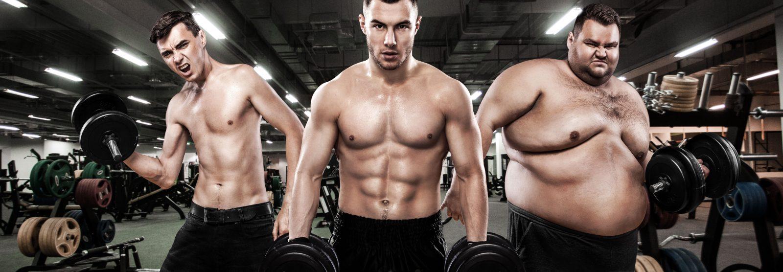 Тип телосложения мужчин (толстый, вкаченный, худой)
