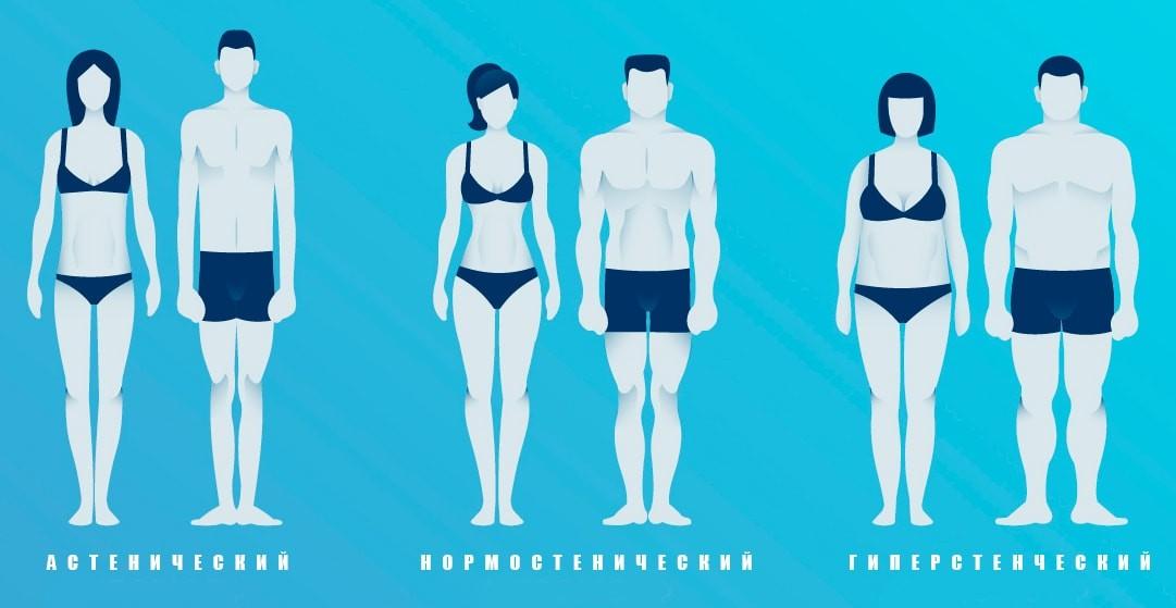 Телосложения мужчин и женщин: астенический, нормостенический, гиперстенический