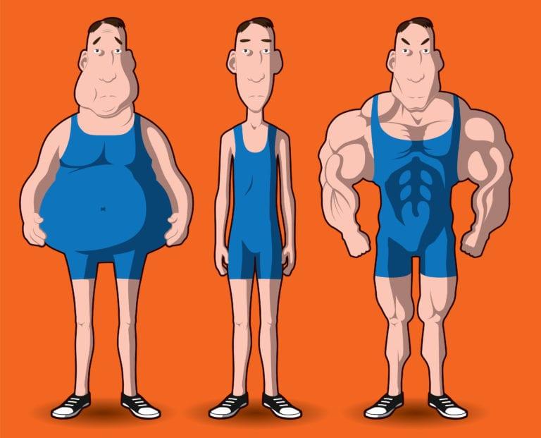 Типы телосложения по Шелдону (эктоморф, эндоморф, мезоморф)