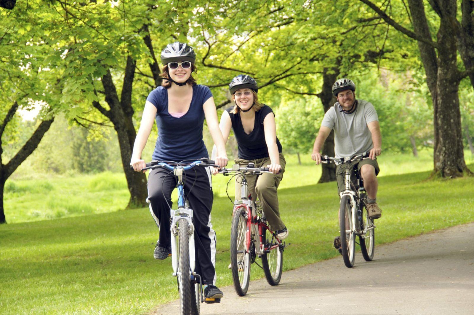 Две девушки и один парень ездят в лесополосе на велосипедах