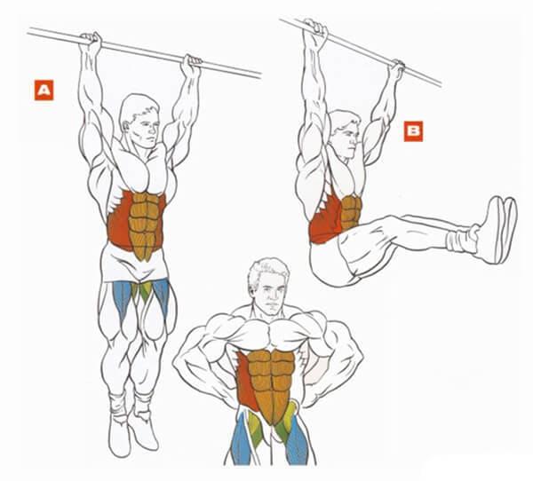 Техника выполнения упражнения подъем прямых ног в висе на перекладине на пресс