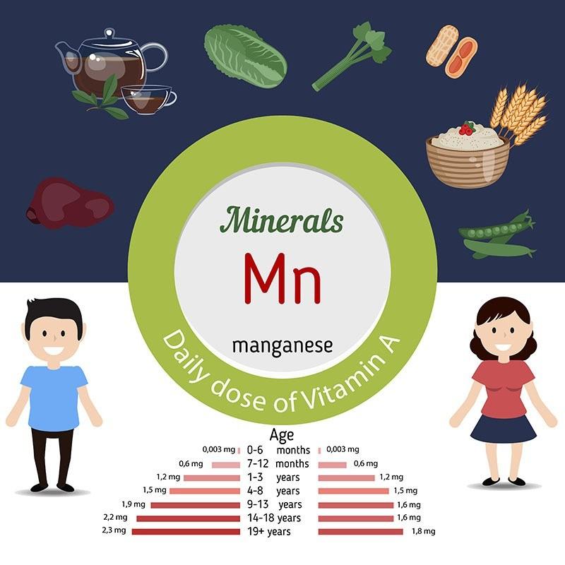 Продукты содержащие марганец и потребность в нем в зависимости от возраста
