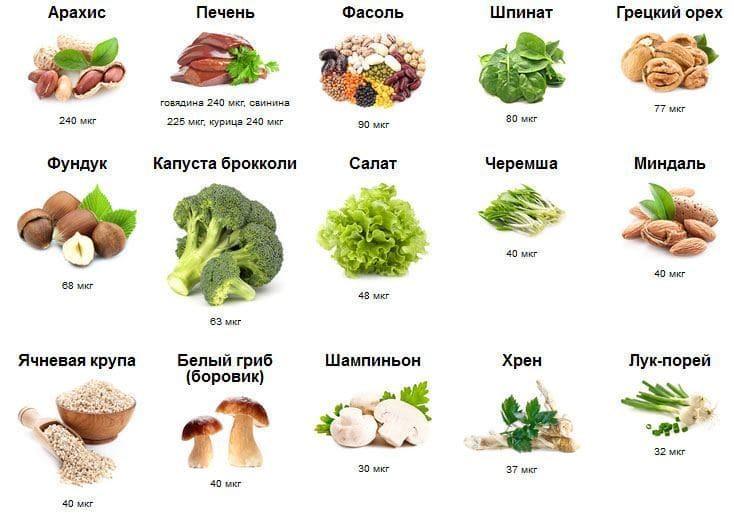 Источники продуктов, содержащие фолиевую кислоту (витамин В9)