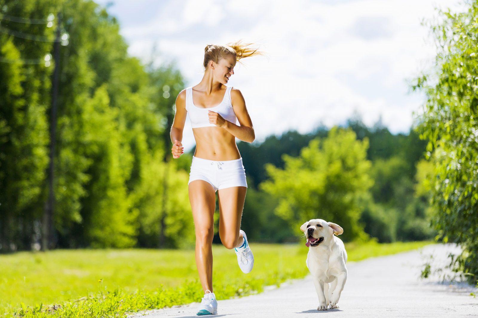 Девушка и собачка делают утреннюю пробежку на природе
