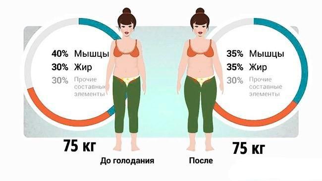 Две девушки по 75 кг, в различном соотношении мышц и жира