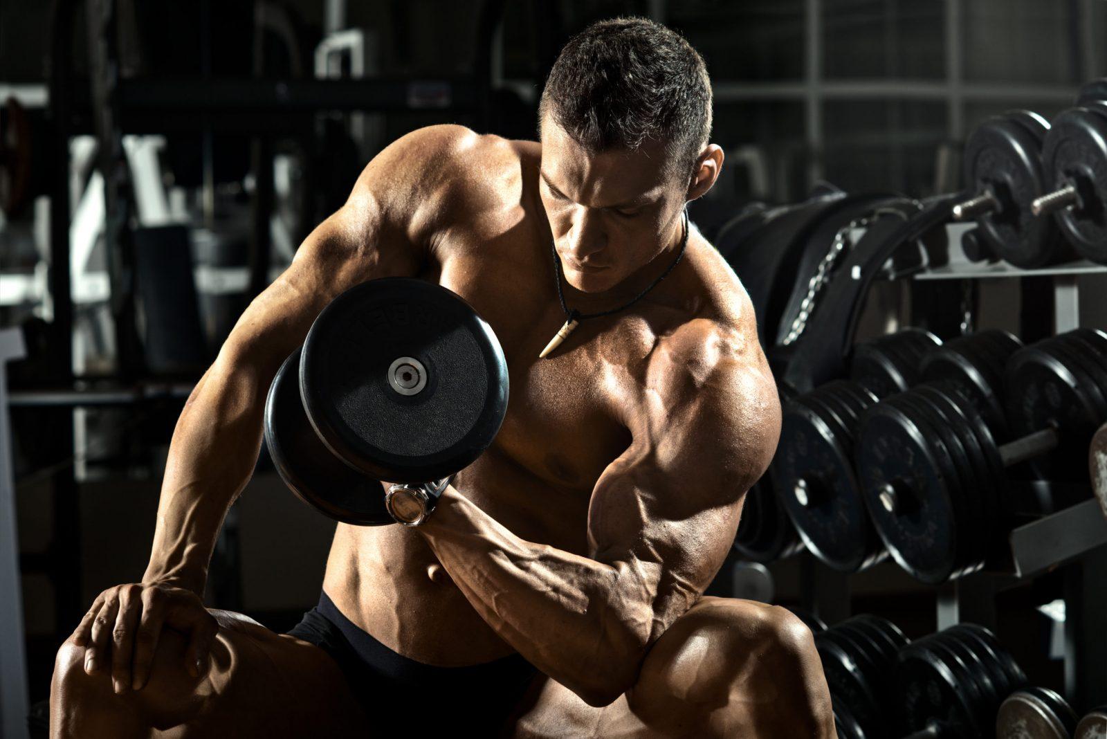 Упражнение концентрированный подъем гантели на бицепс